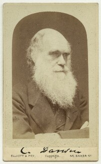 Charles Darwin, by Elliott & Fry, 1874 - NPG x5934 - © National Portrait Gallery, London
