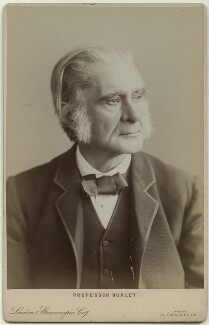 Thomas Henry Huxley, by London Stereoscopic & Photographic Company - NPG x36198