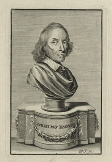 William Harvey, by William Faithorne - NPG D27265