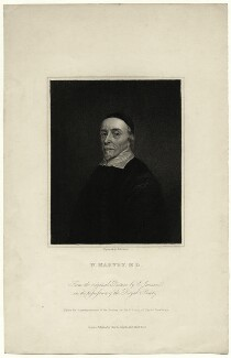 William Harvey, by Edward Scriven, after  Cornelius Johnson, early 19th century - NPG D27270 - © National Portrait Gallery, London