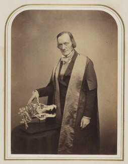 Sir Richard Owen, by Maull & Polyblank - NPG Ax87531