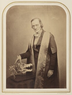 Sir Richard Owen, by Maull & Polyblank - NPG Ax7925