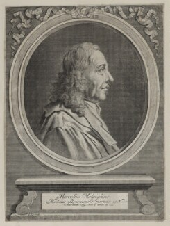 Marcello Malpighi, by Jan Kip, after  Unknown artist - NPG D30760