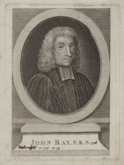 John Ray, after William Faithorne - NPG D31153