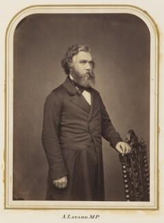 Sir Austen Henry Layard, by Maull & Polyblank - NPG Ax7282