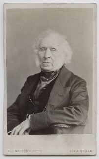 Sir David Brewster, by Henry Joseph Whitlock - NPG Ax39930