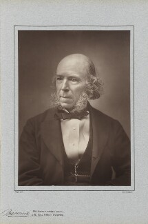 Herbert Spencer, by Herbert Rose Barraud, published by  Richard Bentley & Son - NPG Ax5412