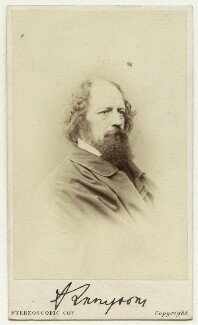 Alfred, Lord Tennyson, by London Stereoscopic & Photographic Company - NPG Ax7505