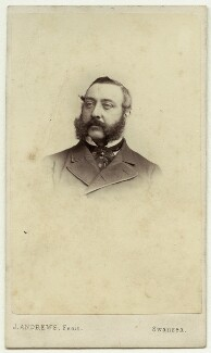 Henry Hussey Vivian, 1st Baron Swansea, by James Andrews - NPG Ax77082