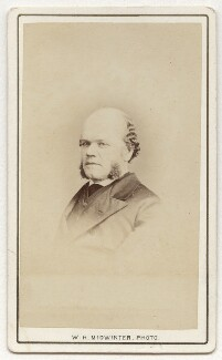 George Odger, by William Henry Midwinter - NPG Ax8684