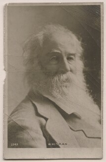 Walt Whitman, by Napoleon Sarony, published by  Rotary Photographic Co Ltd - NPG x27376