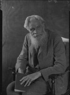 Henry Havelock Ellis, by Lafayette - NPG x48021
