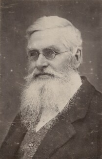 Alfred Russel Wallace, by Thomas Sims - NPG x5113