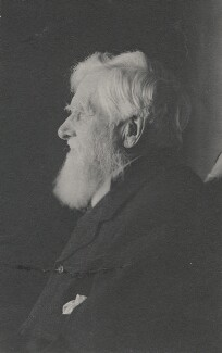Alfred Russel Wallace, by Florence Chant - NPG x5117