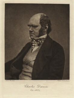 Charles Darwin, by Walker & Boutall, after  Maull & Fox - NPG x5930