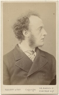 Sir John Everett Millais, 1st Bt, by Elliott & Fry - NPG x6281