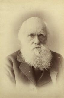 Charles Darwin, by Elliott & Fry - NPG x17013