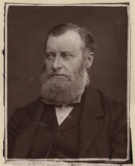 William Edward Forster, by Lock & Whitfield - NPG x133349