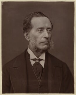 Sir (Francis) Leopold McClintock, by Lock & Whitfield - NPG x133386