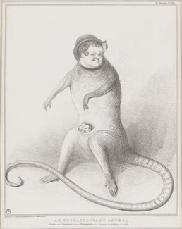 An Extraordinary Animal, by John ('HB') Doyle, printed by  Ducôte & Stephens, published by  Thomas McLean - NPG D41317