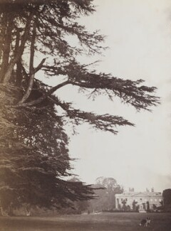 'Broadlands' (seat of Baron Mount Temple), by Unknown photographer - NPG Ax160605