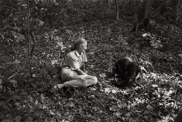 Dame Jane Goodall, by Ken Regan - NPG x136430