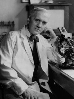Alexander Fleming, by Howard Coster - NPG x136472