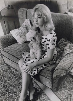 Mandy Rice-Davies with her poodle, by Keystone Press Agency Ltd - NPG x137326