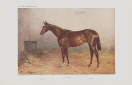 Famous Racehorses. No. 7. 'Pretty Polly.', by (Thomas) Percy Earl - NPG D45517