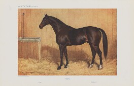 Famous Racehorses No. 12. 'Santry.', by Frank Paton - NPG D45540