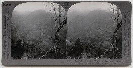 'Trail Leading to Mountain Tomb of Robert Louis Stevenson, Mount Vaea, Samoa', published by Keystone View Company - NPG x199108