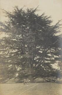 '(Lloyd) Logan Pearsall Smith writing underneath the cedar of Lebanon', by Unknown photographer - NPG Ax160747