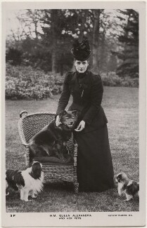 'H.M. Queen Alexandra and her pets' (Queen Alexandra), by Thomas Fall, published by  Rotary Photographic Co Ltd - NPG x196863