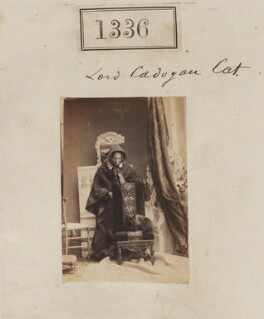 'Lord Cadogan's cat' (probably Honoria Louisa (née Blake), Countess Cadogan with her cat), by Camille Silvy - NPG Ax50736