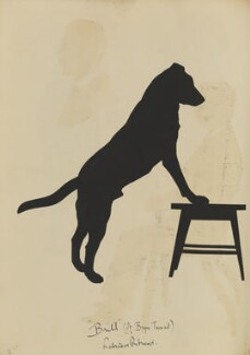 Silhouette of a dog '