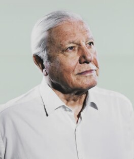 Sir David Attenborough, by Sam Barker - NPG x199654