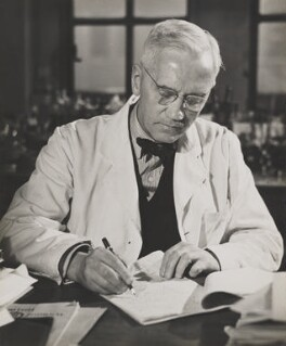 Sir Alexander Fleming, by Wolfgang Suschitzky - NPG x200738