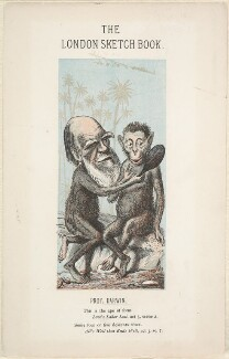 Charles Darwin, by Faustin Betbeder ('Faustin') - NPG D1388