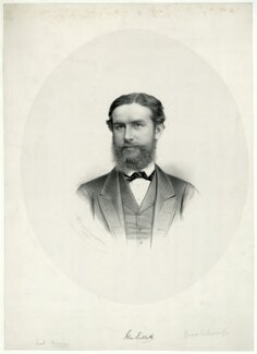 John Lubbock, 1st Baron Avebury, by George B. Black, 1871 - NPG D7452 - © National Portrait Gallery, London
