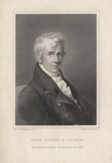 James Sowerby, by J.C. Edwards, after  Thomas Heaphy - NPG D8638