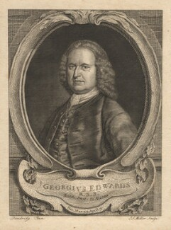 George Edwards, by John Sebastian Miller (formerly Johann Sebastian Müller), after  Bartholomew Dandridge - NPG D8918