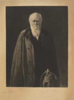 Charles Darwin, by Léopold Flameng, after  John Collier - NPG D9709
