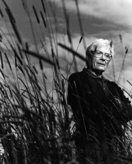 James Ephraim Lovelock, by Paul Tozer, 25 July 1994 - NPG x45758 - © Paul Tozer / National Portrait Gallery, London