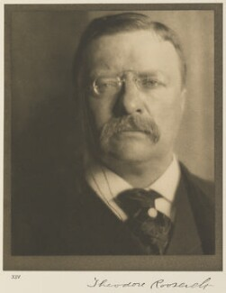 Theodore Roosevelt, by Alvin Langdon Coburn - NPG Ax7781