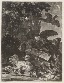 Birdpiece with Turkey, Peacock and other Birds, by Robert Robinson, published by  Isaac Beckett - NPG D11771