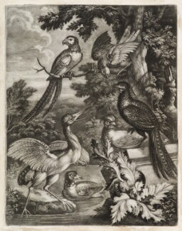 Exotic Birds, by Robert Robinson, published by  John Smith - NPG D11781