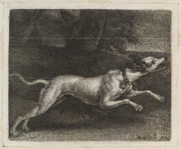 A Greyhound, possibly published by John Smith, after  Jan Verkolje - NPG D11836