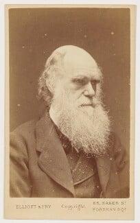 Charles Darwin, by Elliott & Fry - NPG x5933