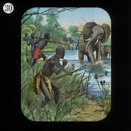 Elephant Protecting her Young (relates to David Livingstone), by Unknown artist, published by  The London Missionary Society - NPG D18403