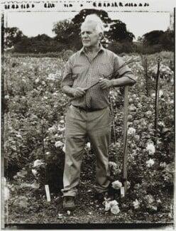 David Charles Henshaw Austin, by Tessa Traeger, 2001 - NPG P1026(1) - © Tessa Traeger / National Portrait Gallery, London